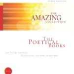 The Amazing Collection Bible study