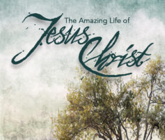 The Amazing Life of Jesus Christ